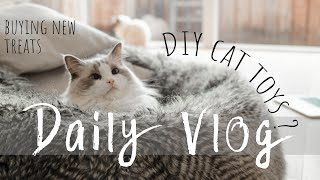 A day in life with RAGDOLL cats | DAILY VLOG | DIY cat toys | Ragdolls Pixie and Bluebell