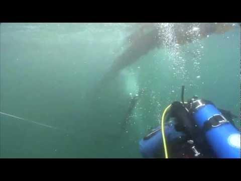 UAF - 2008 - Underwater research 1