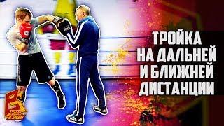 Бокс: Убойная тройка на дальней и средней дистанции. Алексей Фролов