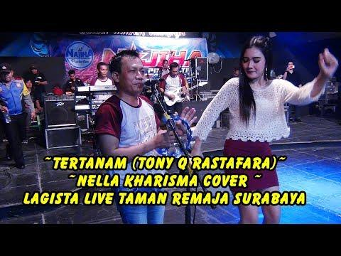 #Tertanam (Tony Q Rastafara)  - Nella Kharisma cover -  Lagista Live Taman Remaja Surabaya Mp3