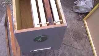 ловля пчелиных роев чясть 1 сбор и установка роевни