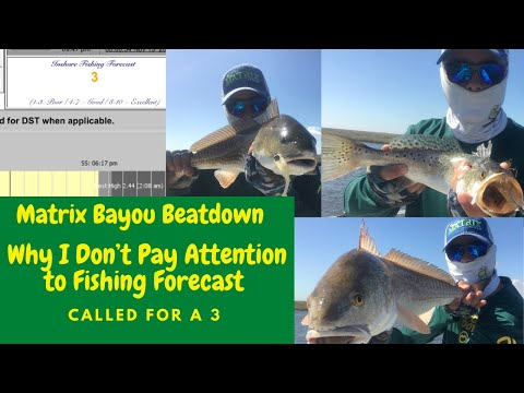 DONT RELY ON FISHING FORECAST 45MIN OF MATRIX SHAD BAYOU BEATDOWN ON REDFISH SPECKLED TROUT!!!