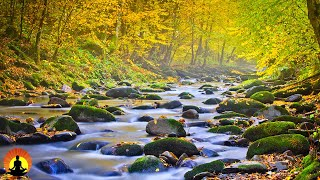🔴 Healing Waters - Relaxing Music 247 Meditation Music Sleep Music Study Music Calming Music