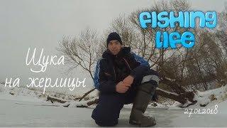 видео Ловля щуки зимой