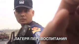 """""""Великий исход казахов"""". Официальный русский трейлер книги"""