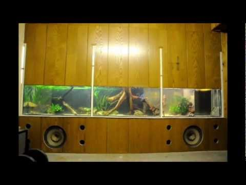 3d aquarium hintergrund zum selber bauen diy backgroun doovi. Black Bedroom Furniture Sets. Home Design Ideas