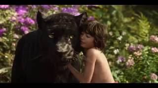 The Jungle Book | Animals