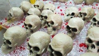Mysterious Halloween Skulls!