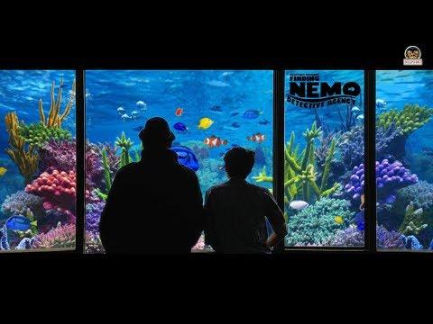 Finding Nemo Detective Agency