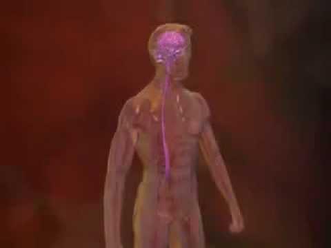 meningite respiration anormalement rapide hyperventilation