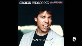 Watch George Thorogood  The Destroyers Wanted Man video