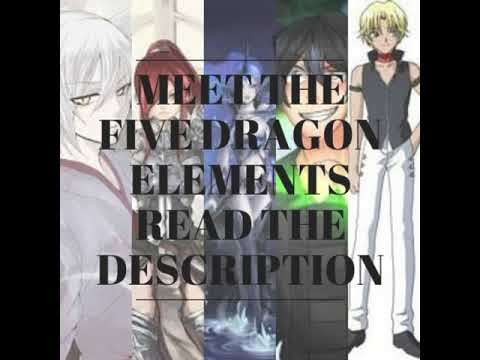 The five Dragon elements!!!!