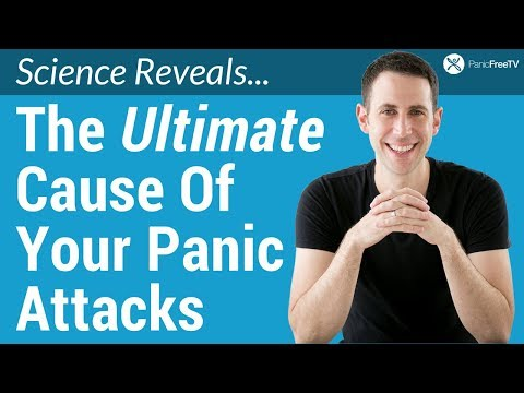 What Causes Panic Attacks? (The Ultimate Cause)