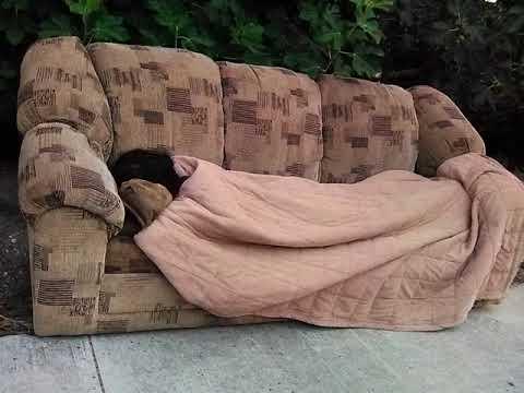Man sleeps on couch in Van Nuys