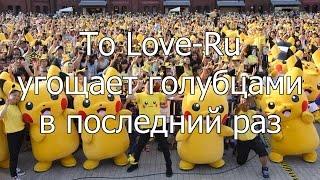 Котик и Сарочка смотрят аниме: To LOVE-Ru угощает голубцами #20