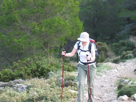Hiking Equipment   Walking Poles, Trekking Poles Or Hiking Poles U0026 How To  Use Them