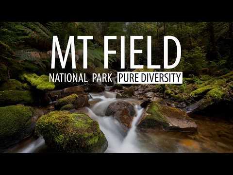 Mt Field National Park, Pure Diversity