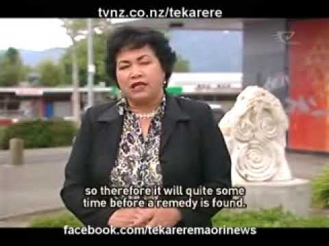 Tribesman and Mongrel Mob fighting Murupara and Tame Iti is trying to find a solution Te Karere Maori News TVNZ 9 Nov 2009 English version