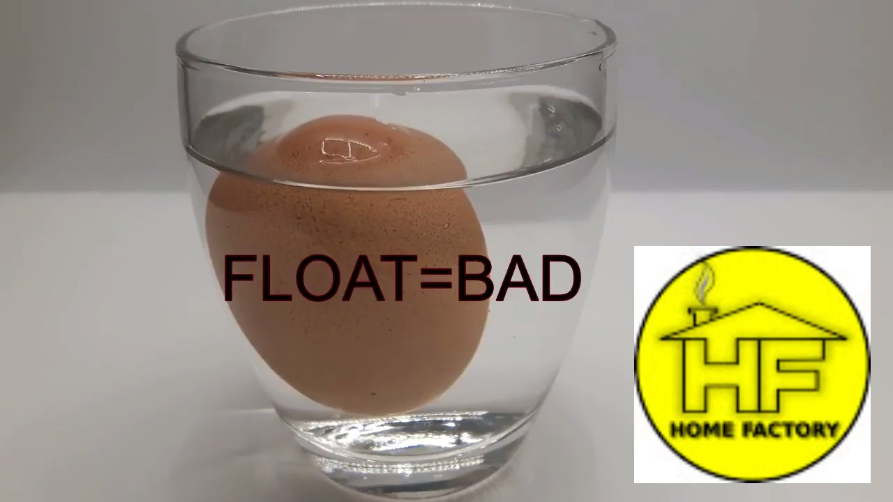 how to know if your egg is bad