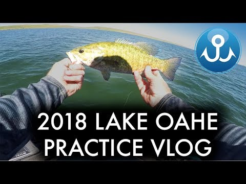 I Get Shot At While Fishing On Lake Oahe, SD |PRACTICE VLOG| Wheeler Fishing Episode 15