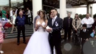 Свадьба в Сургуте Сергей и Дарья 08 августа 2015