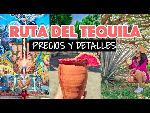 Ruta del Tequila en Jalisco: ¡ya se puede hacer esto!