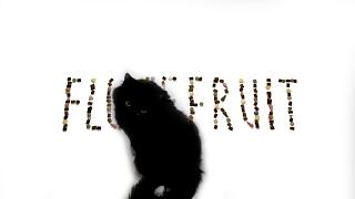 Коты едят витамины | Flufffruit