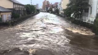 台風18号で氾濫寸前の境川(藤沢橋より①)