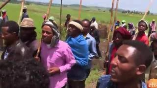 Meskel Celebration At Selale - የመስቀል በዓል አከባበር በሰላሌ