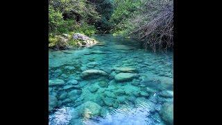 la traque des truites farios sauvages de la riviere aux mille couleurs