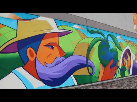 Natural Grocers Mural Project Video