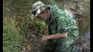 Интересные приманки Выпуск 3. Часть 2.