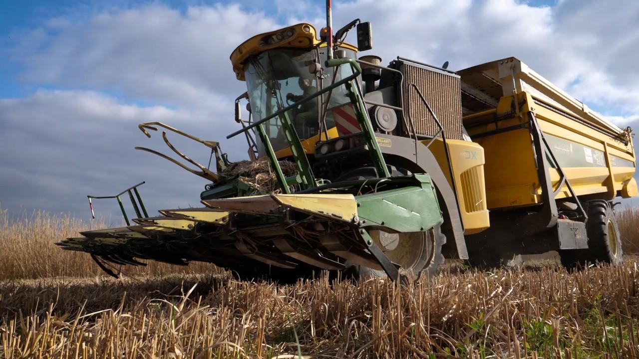 Biggest Forage Harvester PRO DX I 1200Hp I 12 Rows I Récolte de ...