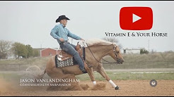Equine Omega Complete - Vitamin E Information For Your Horse
