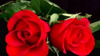 Tavalodet Mobarak Happy Birthday Iranian Music  گلچین نورحقیقی: تولدت مبارک