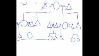 Kinship Diagram help