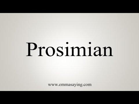 How To Pronounce Prosimian