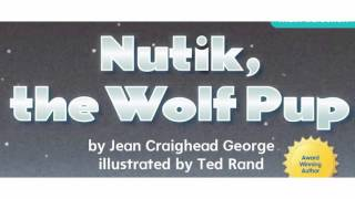 nutik the wolf pup read aloud no pictures
