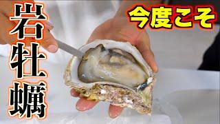 リベンジ!!懲りずに特大岩牡蠣を注文してみた!