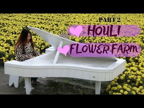 EXPLORING TAIWAN: Part2 Houli flower farm Vlog#08
