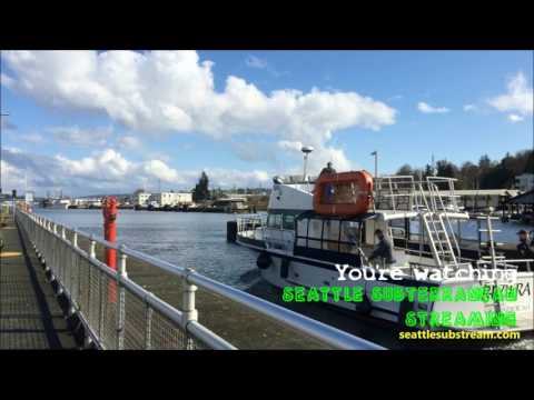 Seattle Substream Long Bumper 1