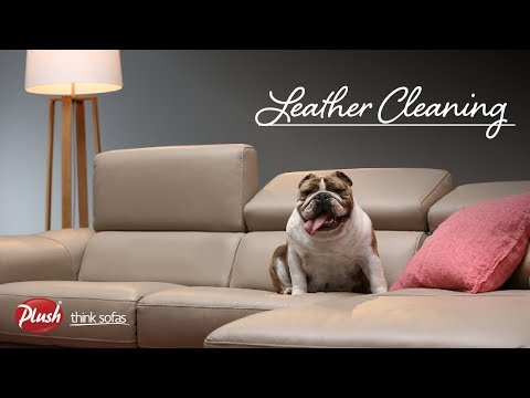 Plush FAQ: Leather Sofa Care