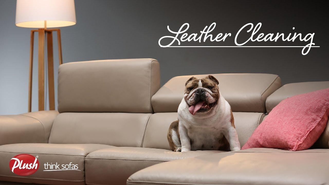 Plush Faq Leather Sofa Care You