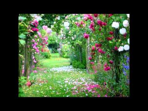 Poema Dia Dos Pais Com A Musica(amor De Pai. Regis Danese Com Part: Brenda Danese)
