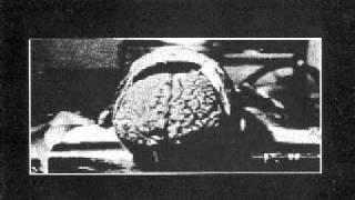 M.B. - Maurizio Bianchi - Neuro Habitat- 1982