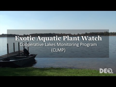 Exotic Aquatic Plant Watch Training - Protect Michigan's Lakes!