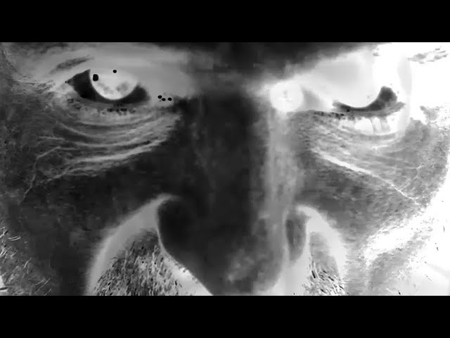 GARAGEDAYS - Official album trailer 2018