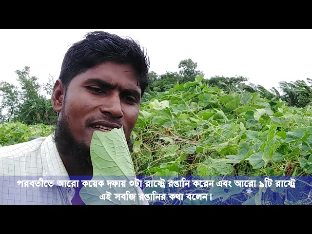 Meghna Video Vegetable