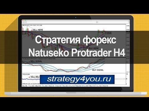 Стратегия форекс Natuseko Protrader H4