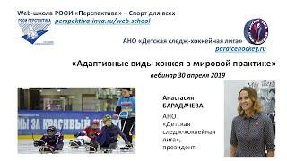Вебинар: Адаптивные виды хоккея в мировой практике (30.04.19)